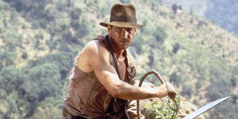 Hat, Headgear, Sun hat, Muscle, Adventure, Fedora, Quickdraw, Cowboy hat, Farmer, Tool,