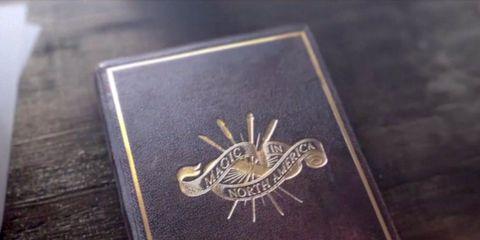 Logo, Metal, Symbol, Emblem, Silver, Bird of prey, Identity document, Gold,