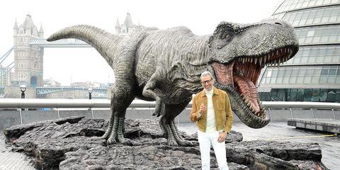 Dinosaur, Tyrannosaurus, Velociraptor, Organism, Claw, Jaw, Extinction, Art,