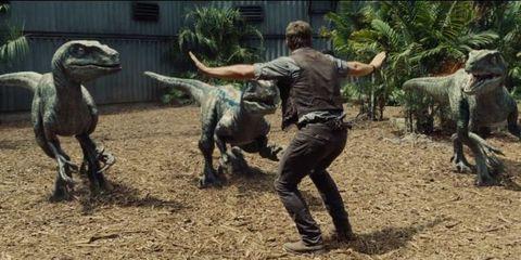 Human, Vertebrate, Dinosaur, Interaction, Soil, Terrestrial animal, Extinction, Boot, Tyrannosaurus, Velociraptor,