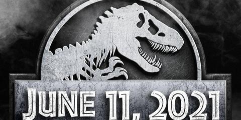 Dinosaur, Font, Logo, Tyrannosaurus, Black-and-white, Graphics,