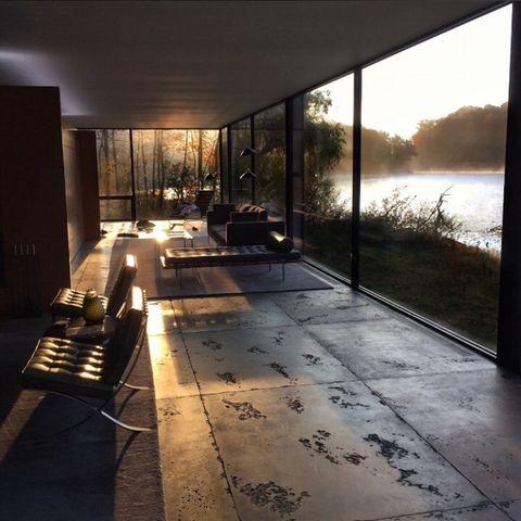 Floor, Flooring, Fixture, Daylighting, Shade, Reflection, Houseplant, Transparent material, Building material,
