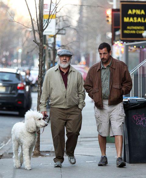 Dog, Canidae, Dog walking, Fashion, Street fashion, Street, Human, Fur, Companion dog, Leash,