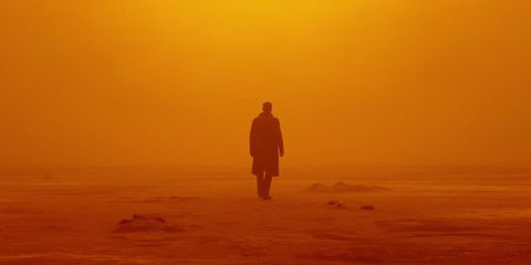 Atmosphere, Atmospheric phenomenon, Amber, Orange, People in nature, Mist, Haze, Fog, Sunset, Walking,