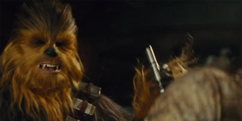 Chewbacca, Fictional character, Darkness, Primate, Fur, Snout, Golden lion tamarin, Fawn, Blond, Liver,
