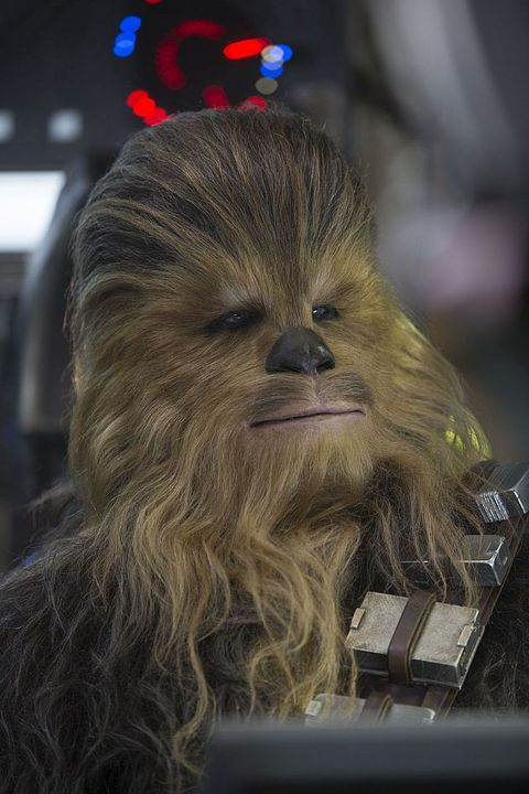 Chewbacca, Blond, Fictional character, Snout, Fur, Artificial hair integrations,