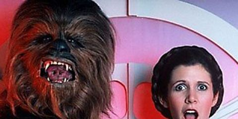 Chewbacca, Fictional character, Dog, Canidae, Companion dog, Dog breed, Laugh, Liver,
