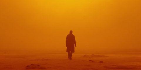 Sky, Atmospheric phenomenon, Horizon, Morning, Yellow, Orange, Sunrise, Standing, Calm, Ecoregion,
