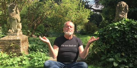 Sitting, Botany, Grass, Tree, Plant, Garden, Shrub, Lawn,