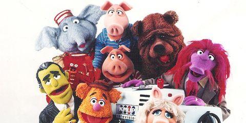 Toy, Organism, Animation, Baby toys, Plush, Animated cartoon, Teddy bear, Fictional character, Humour,