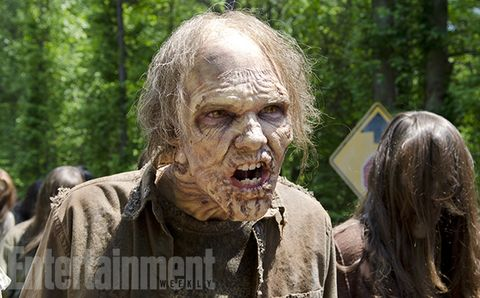 Zombie, Fictional character, Wrinkle, Scar, Fiction, Disfigurement, Flesh, Old-growth forest, Woodland,