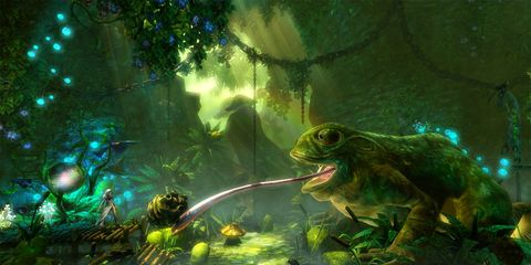 Organism, Amphibian, Animation, Toad, Illustration, Frog, Cg artwork, Painting, Jungle, Animated cartoon,