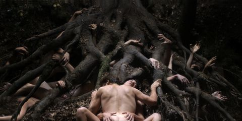 Nature, Organism, Photograph, Chest, Barechested, Trunk, Muscle, Black, Back, Abdomen,