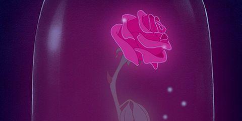 Purple, Pink, Magenta, Violet, Art, Creative arts,