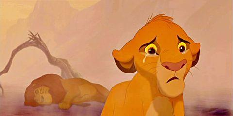 Animated cartoon, Lion, Cartoon, Felidae, Animation, Big cats, Illustration, Art, Carnivore, Wildlife,