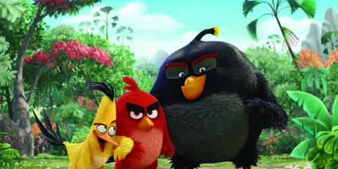 Organism, Green, Bird, Beak, Leaf, Animation, Fictional character, Terrestrial animal, Cartoon, Angry birds,