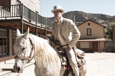 Human, Halter, Horse supplies, Bridle, Hat, Vertebrate, Horse, Horse tack, Rein, Working animal,