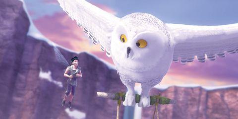 Animation, Owl, Fictional character, Purple, Lavender, Bird, Bird of prey, Violet, Cg artwork, Animated cartoon,