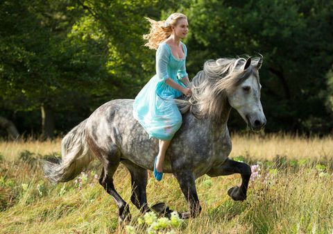 Human, Horse, Dress, Working animal, Grassland, People in nature, Bridle, Horse supplies, Liver, Mane,