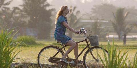 Bicycle tire, Bicycle wheel rim, Bicycle wheel, Bicycle frame, Bicycle fork, Plant, Bicycle handlebar, Bicycle, Bicycle part, Bicycle accessory,