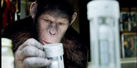 Lip, Cheek, Finger, Skin, Primate, Vertebrate, Forehead, Jaw, Terrestrial animal, Organ,