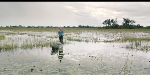 Marsh, Wetland, Water resources, Freshwater marsh, Fen, Salt marsh, Plain, Tidal marsh, Lake, Bog,