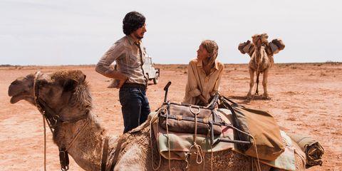 Human, Mode of transport, Camel, People, Vertebrate, Working animal, Landscape, Camelid, Aeolian landform, Adaptation,