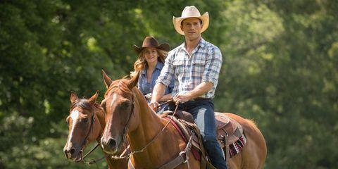 Human, Halter, Bridle, Hat, Horse supplies, Rein, Working animal, Horse, Saddle, Horse tack,