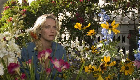 Petal, Flower, Floristry, Flowering plant, Spring, Wildflower, Bouquet, Floral design, Flower Arranging, Annual plant,