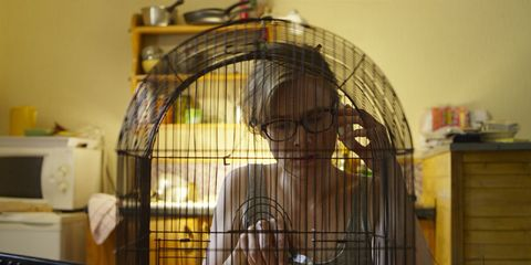 Product, Cage, Pet supply, Iron, Bird,
