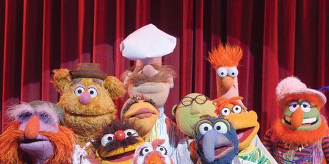 Toy, Fur, Curtain, Plush, Mascot, Animation, Lamp, Puppet, Teddy bear,