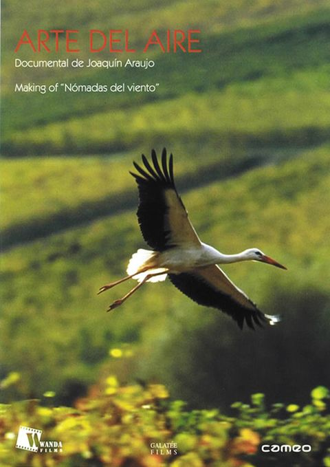 Natural landscape, Bird, Beak, Nature reserve, Pelecaniformes, Wing, Ciconiiformes, Adaptation, Ecoregion, Wildlife,