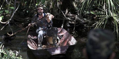 Watercraft, Jungle, Boat, Boot, Arecales, Adventure, Wetland, Rainforest,