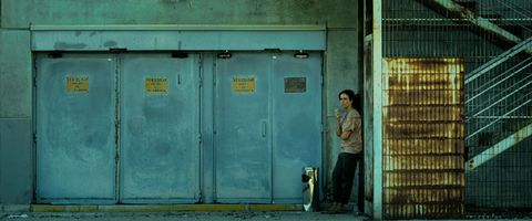 Green, Standing, Carnivore, Dog, Dog breed, Teal, Turquoise, Street fashion, Photography, Companion dog,