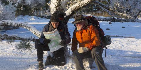 Pelicula Un Paseo Por El Bosque Critica Un Paseo Por El Bosque