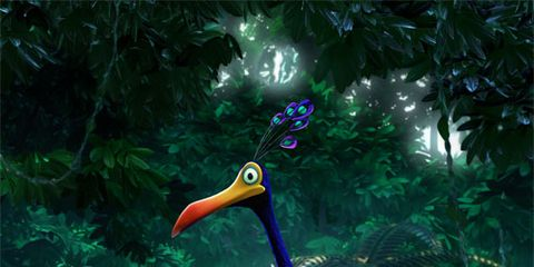 Organism, Vertebrate, Bird, Adaptation, Beak, Terrestrial animal, Terrestrial plant, Carnivore, Garden, Extinction,