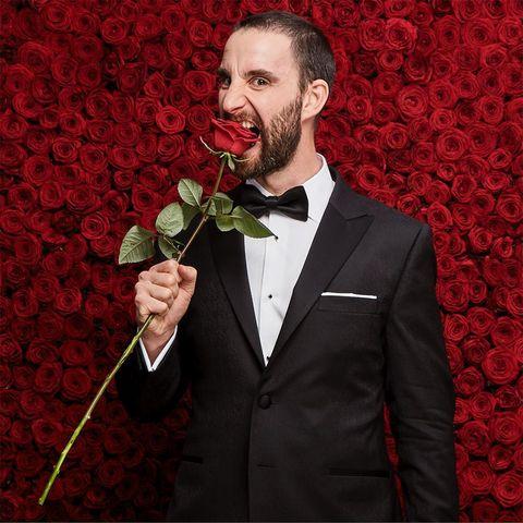 Coat, Collar, Red, Suit, Outerwear, Formal wear, Facial hair, Petal, Beard, Blazer,