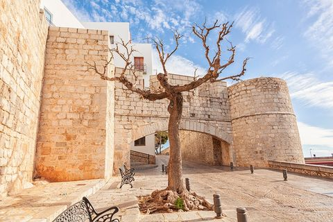 Tree, Wall, Building, Historic site, Architecture, Ancient history, Woody plant, Tourism, Vacation, House,