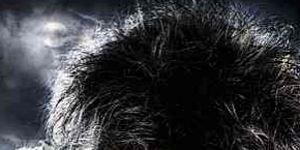 Organism, Vertebrate, Terrestrial animal, Facial expression, Snout, Jaw, Black, Primate, Tongue, Fur,