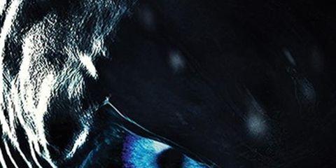 Blue, Black, Eye, Darkness, Organ, Close-up, Iris, Eyelash, Illustration, Black-and-white,