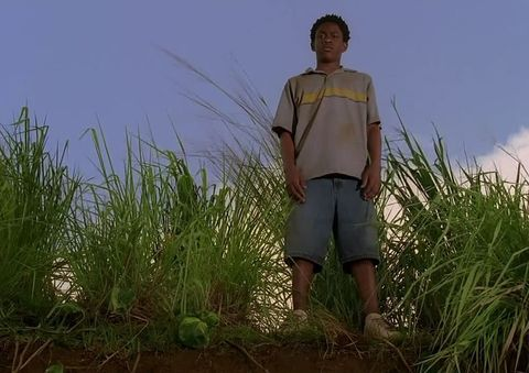 Human, Grass, People in nature, Flowering plant, Grass family, Poales, Prairie, Bermuda shorts, Sedge family, Barefoot,