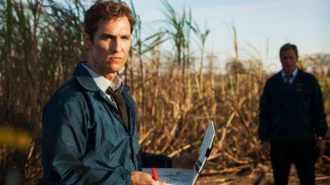 matthew mcgonaghey en true detective