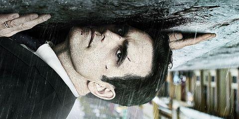 Face, Nose, Eye, Black hair, Organ, Forehead, Mouth, Lip, Tree, Cool,
