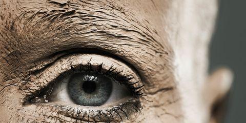 Brown, Skin, Eyelash, Eyebrow, Iris, Colorfulness, Organ, Photography, Close-up, Fawn,