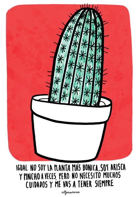 Line, Font, Rectangle, Illustration, Graphics, Drawing, Cactus,