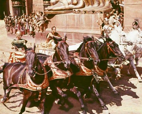 Human, People, Horse supplies, Bridle, Vertebrate, Halter, Rein, Working animal, Horse, Horse tack,