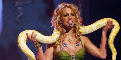 Boa constrictor, Snake, Boa, Reptile, Performance, Scaled reptile, Python, Abdomen, Muscle, Performing arts,
