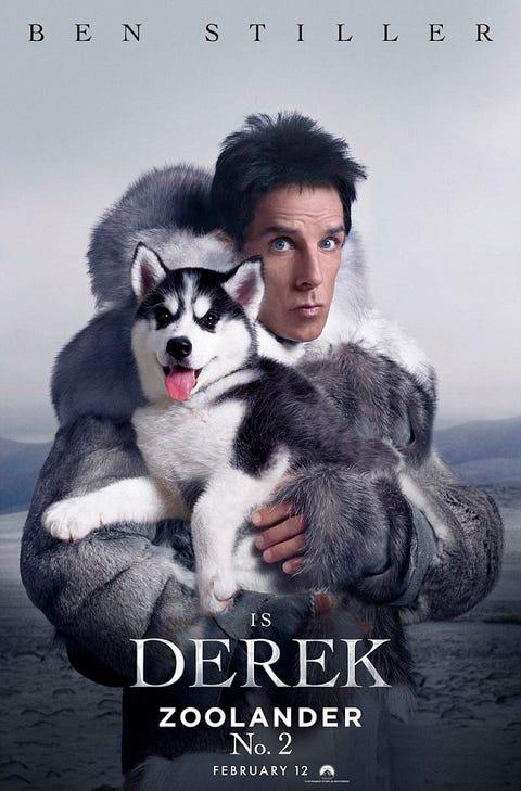 Vertebrate, Carnivore, Sled dog, Dog, Dog breed, Jaw, Iris, Fur, Poster, Snout,