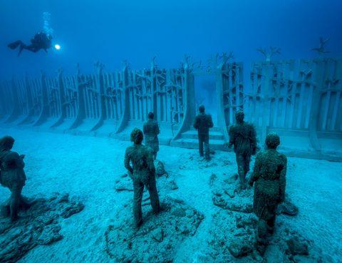 Underwater, Water, Organism, Recreation, Underwater diving, Ocean, Diving,