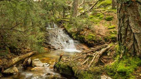 Body of water, Nature, Natural landscape, Natural environment, Water resources, Stream, Landscape, Nature reserve, Forest, Watercourse,